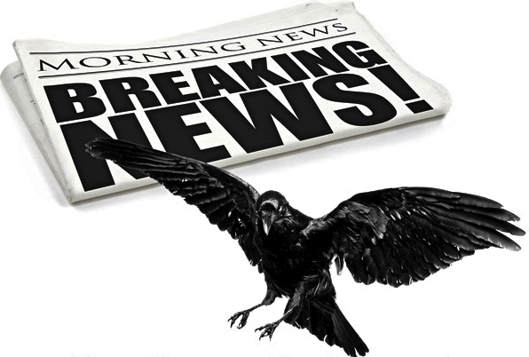 Image result for news and a raven