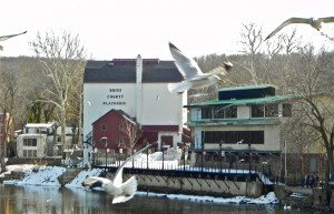 New Hope Free Press Bucks County Playhouse