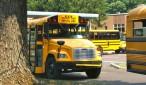 school bus new hope free press