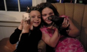 Sisters Charlotte (L) and Sonja Michaluk (R) with their ferret friends