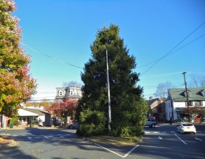 New Hope Free Press Christmas Tree