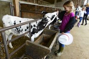 fulper farms new hope free press