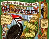 woodpecker new hope free press narrow
